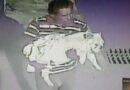 Exhiben a hombre que robó a un perro en Puebla