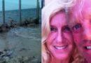 Pareja estadounidense construye muro en playa de Yucatán
