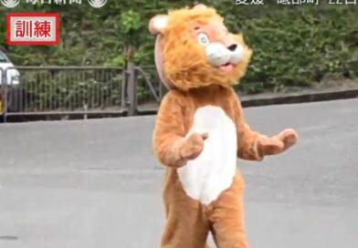 """Empleado de un zoológico se disfraza de león para simular una captura y """"confunde"""" a las leonas"""