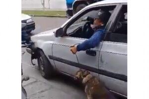 Exhiben a conductor que arrastraba a un perro amarrado del cuello