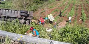 Pobladores hacen rapiña tras volcadura de tráiler de leche en Mérida