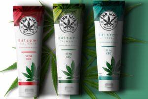 Empresa mexicana lanzará Mariguanol y más productos a base decannabis