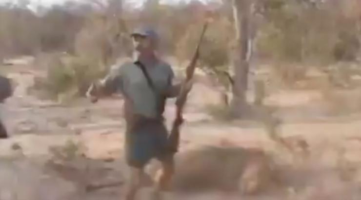 Resultado de imagen para cazan leon se felicitan