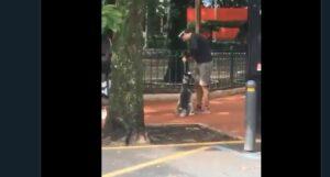 Exhiben a entrenador que asfixió a un perro en Parque México