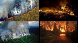 Se viralizan fotografías falsas de incendios en la selva amazónica