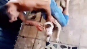 Catean domicilio de sujeto que torturó y mató a un perro en Iztapalapa