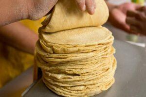 Un 30% de las tortillas en México tienen glifosato, una sustancia tóxica: directora del Conacyt