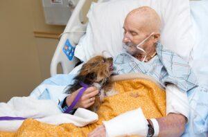 Hombre a punto de morir pide despedirse de su perro