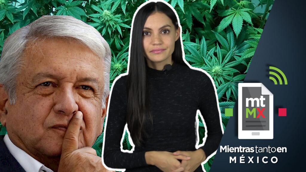 Cannsalud: el Pemex de la marihuana