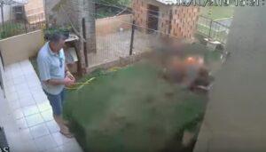 Hombre provoca explosión en su jardín al intentar matar cucarachas