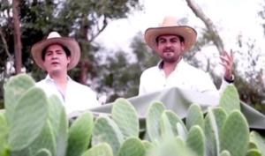 Mexicanos crean 'piel' de nopal y causa sensación en Milán