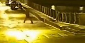 Historiador mata a una exalumna y tira los restos a un río en Rusia