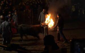 Organización exhibe cómo colocan bolas de fuego a un toro para una fiesta española