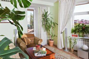 Las plantas no sirven como purificadores de aire al interior de una casa