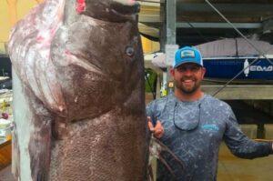 En Florida, EU, atrapan a pez gigante y en peligro de extinción