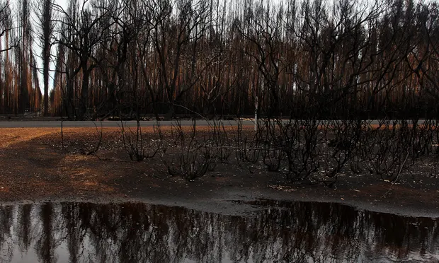 Tras incendios, llegan intensas lluvias a Australia