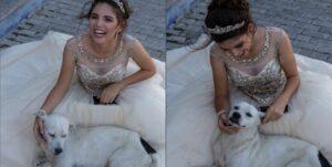 Un perrito callejero irrumpe en la sesión fotográfica de una quinceañera