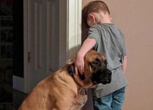 Perro acompaña a un niño a cumplir el castigo que le puso su mamá