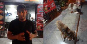 Dueño de restaurante reúne sobras de su negocio para alimentar a perros de la calle