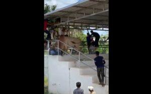 Toro salta a las gradas y embiste a una mujer en Tailandia