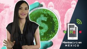 7 tips para apoyar a la economía local en tiempos de coronavirus