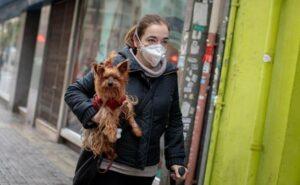Experto de la UNAM afirma que pelaje de mascotas no transmite coronavirus