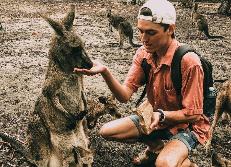 Un joven adopta un canguro sin saber porque estaba muy ebrio