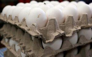 El kilo de huevo podría llegar a los 45 pesos, alerta Canacope