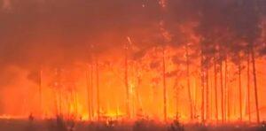 Incendio forestal cerca de Chernóbil aumenta el nivel de radioactividad en la zona