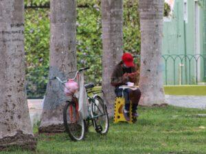 Estudiante toma clases en línea en un parque para poder conectarse a Internet