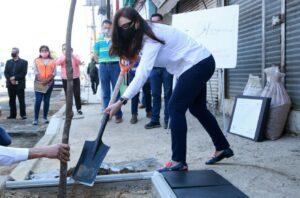 Gobierno de Naucalpan inicia campaña de reforestación urbana