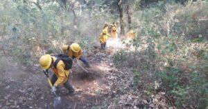 Joven responsable de incendio en Tepoztlán podría recibir multa de hasta 2.6 mdp