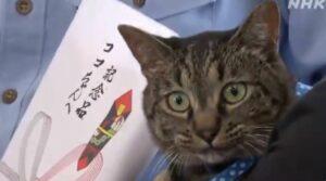 Policía japonesa condecora a un gato que ayudó a salvar a un hombre