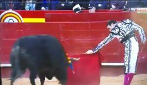 Torero sufre cornada en los muslos durante corrida en España